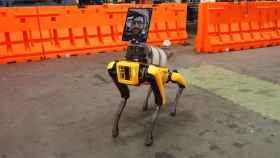 Spot, el perro de Boston Dynamics, con las modificaciones para hospitales