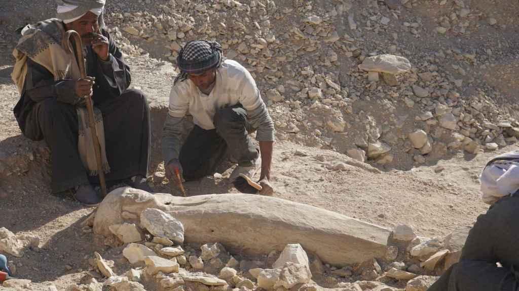Los arqueólogos, en el momento del hallazgo del ataúd de la joven mujer.