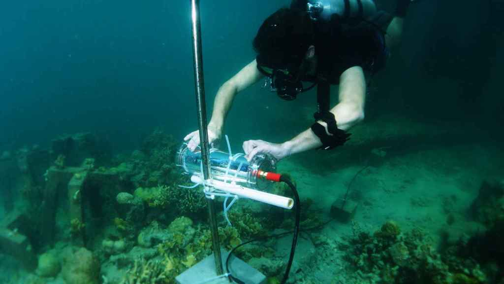 El  proyectoCORaiL se está desarrollando en el arrecife que rodea la isla de Pangatalan (Filipinas).