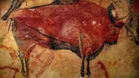 El famoso bisonte de las cuevas de Altamira.