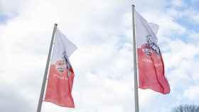 Los estandartes del Colonia en su ciudad deportiva