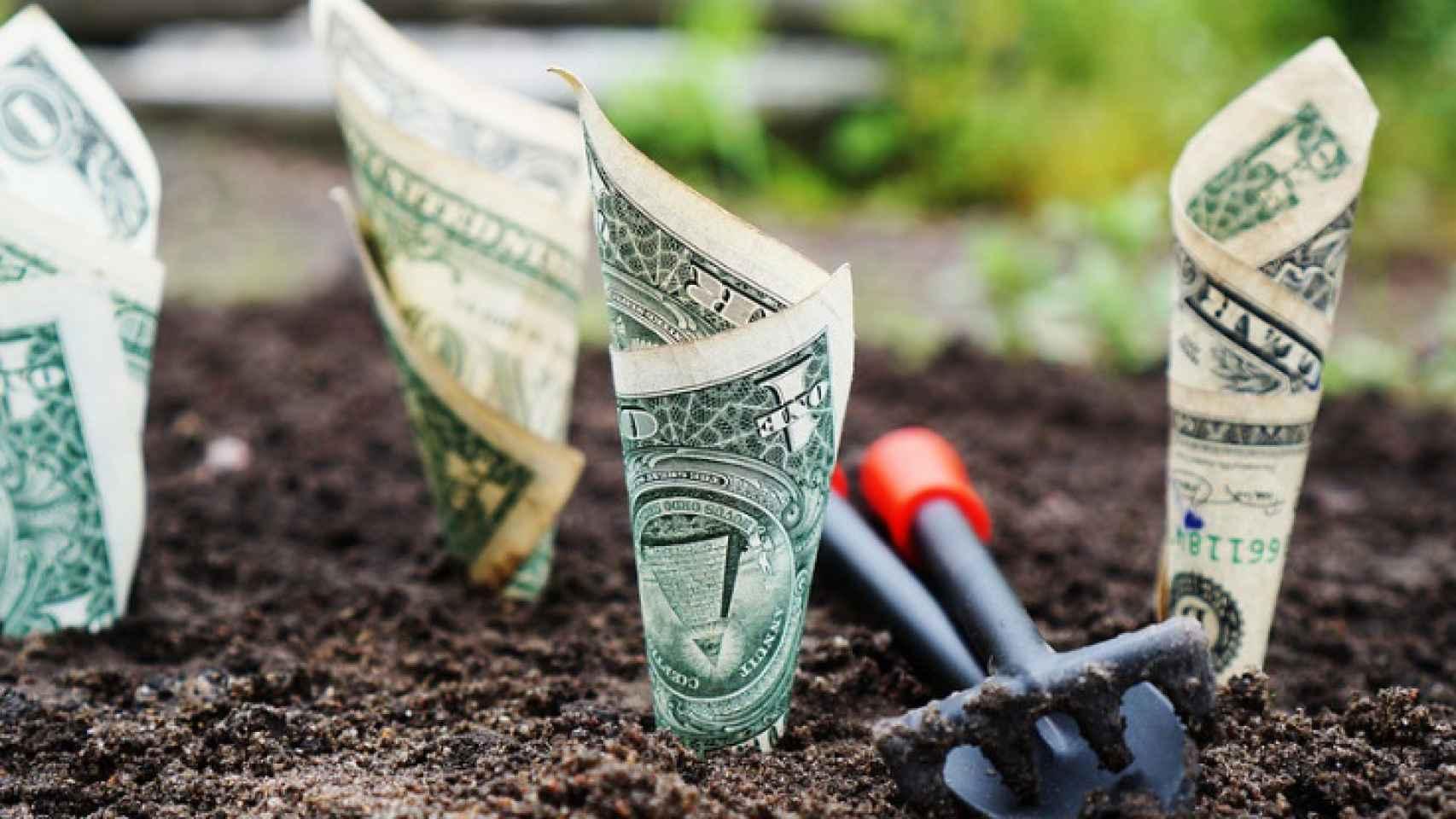 Imagen simbólica de la generación de dinero.