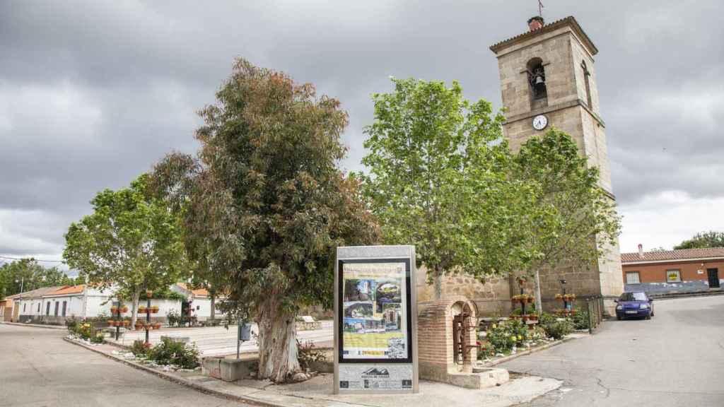 Villarejo de Montalbán (Toledo), este jueves.
