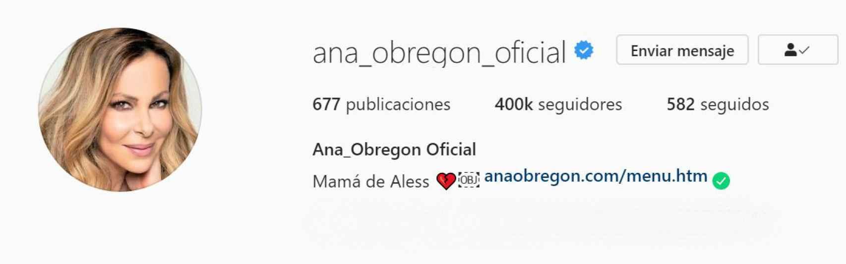 Captura de la nueva biografía de Ana Obregón en su perfil de Instagram.
