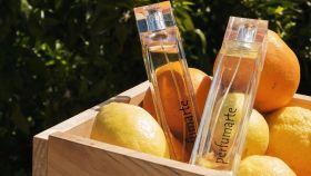 Perfumes cítricos de perfumarte.