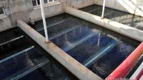 Zamora aquona depuradora 9