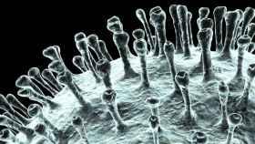 Representación del nuevo coronavirus SARS-CoV-2. Fundación BBVA.