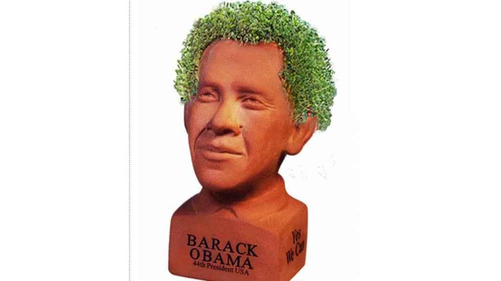 El 'chia pet' de Obama.
