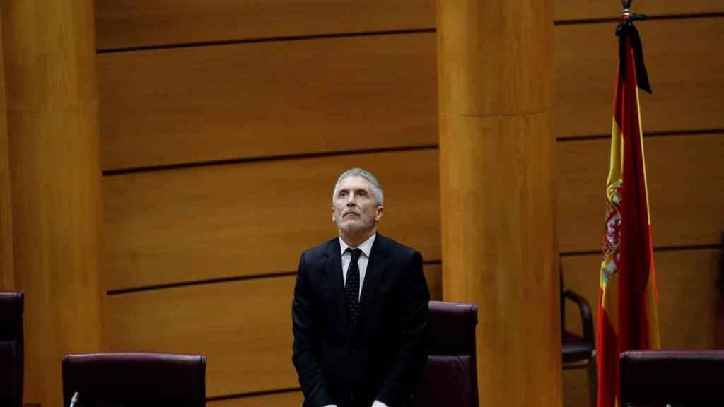 Fernando Grande-Marlaska, ministro del Interior, en el Senado.