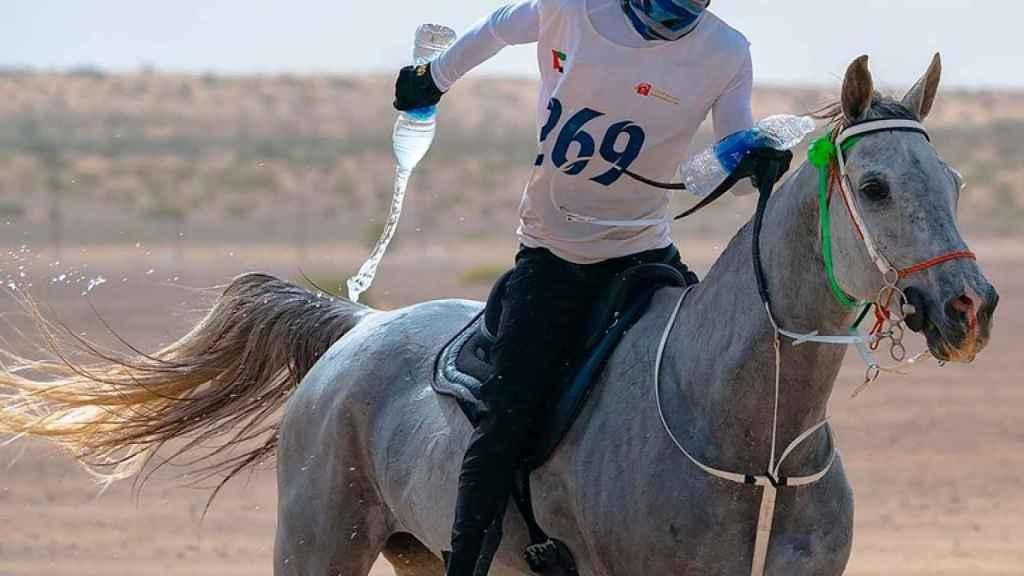 Jinete emiratí con su caballo durante una carrera