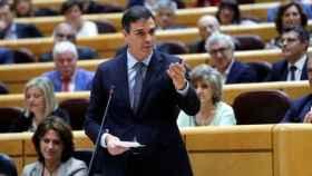 El presidente del Gobierno, Pedro Sánchez,  en una sesión de control en el Senado.