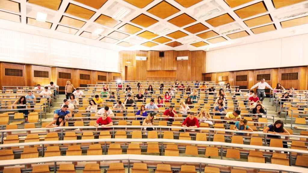 Las universidades y el nuevo perfil profesional