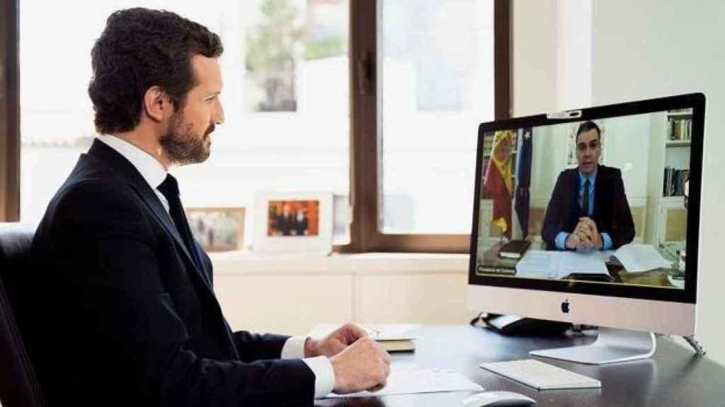 El presidente del PP, Pablo Casado, en videoconferencia con el presidente del Gobierno, Pedro Sánchez.
