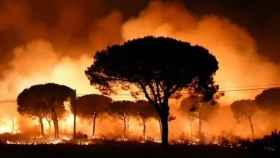 Imagen del incendio originado en 2017 en el entorno del Parque Nacional de Doñana.