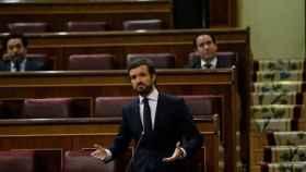 El presidente del PP, Pablo Casado, en su escaño en el Congreso de los Diputados.