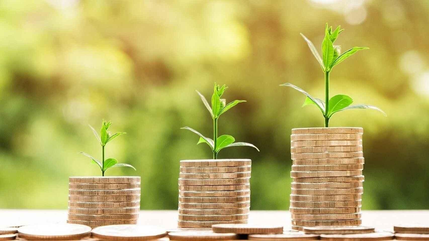Imagen referencial sobre inversión sostenible.