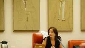 La coordinadora del grupo de reactivación económica de la Comisión del Congreso para la reconstrucción, Luz Martínez-Seijo.