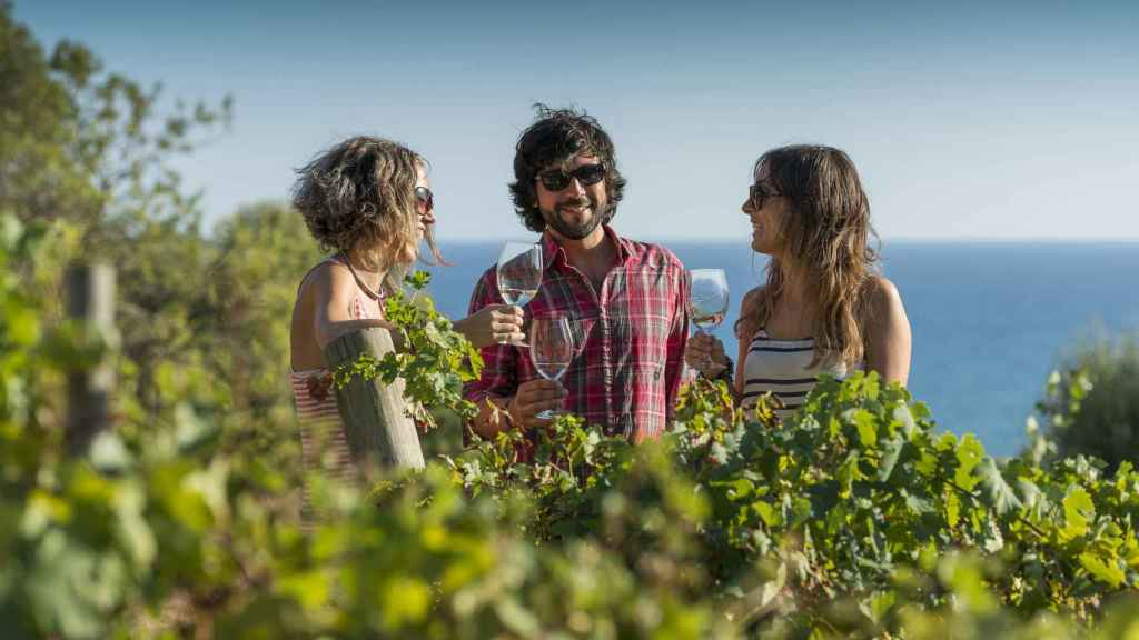 Viajes de vino como alternativa vacacional segura.