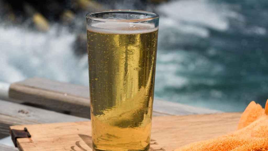 Los peces también toman cerveza