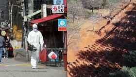Desinfección de una calle en Seúl (izqda) y nuevas tumbas cavadas en Sudáfrica (drcha).