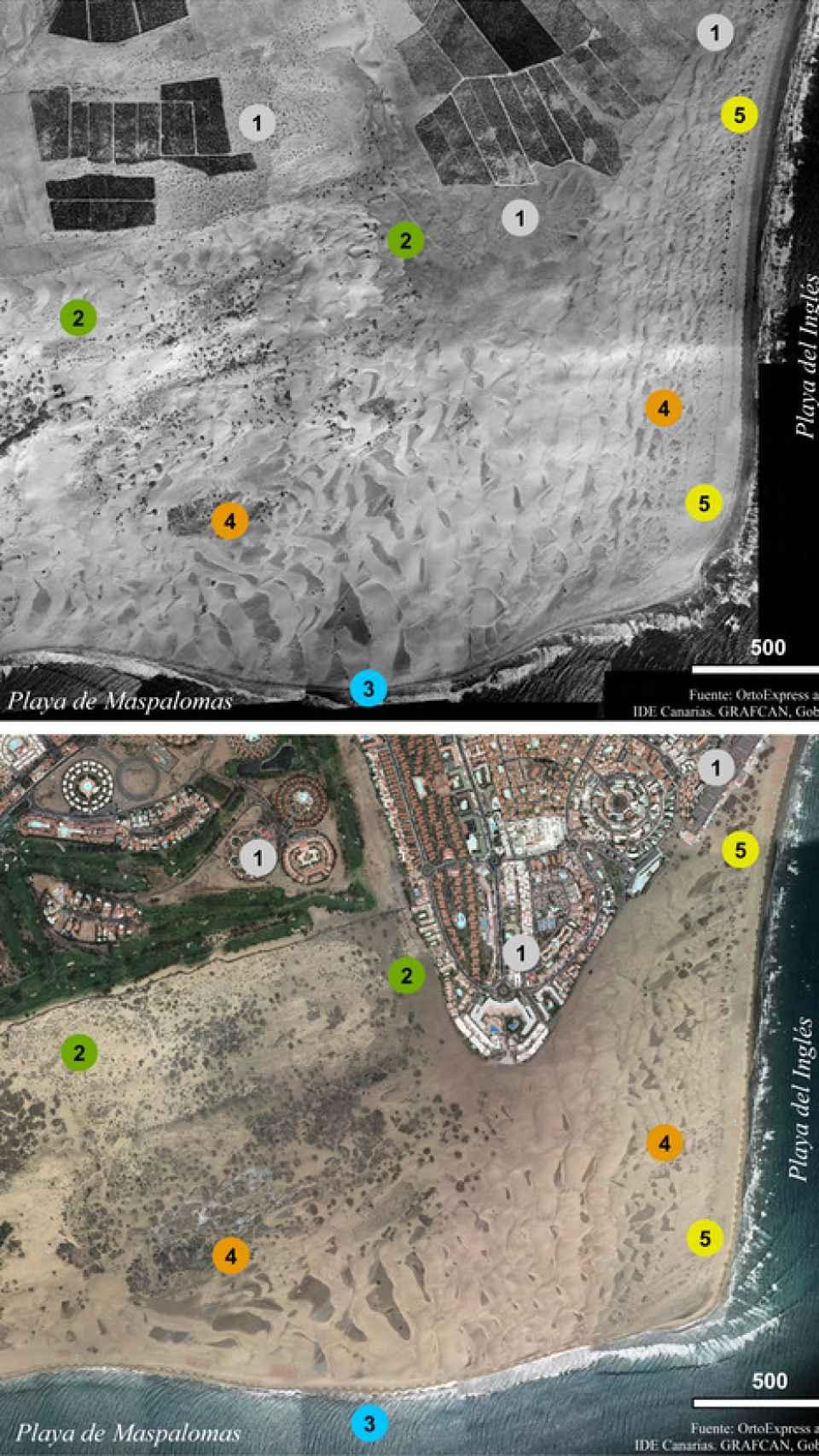 Las cinco diferencias. Cambios ambientales en las dunas de Maspalomas.