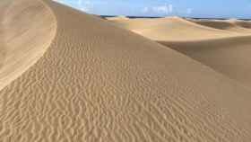 Rizaduras sobre las dunas de Maspalomas.