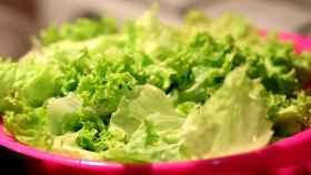 Una ensalada verde elaborada con lechuga (y sin 'salmonella').