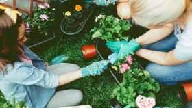 Los artículos de jardinería imprescindibles para tus plantas