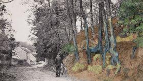 Montaje del lienzo Raíces de árbol y la postal del mismo lugar.