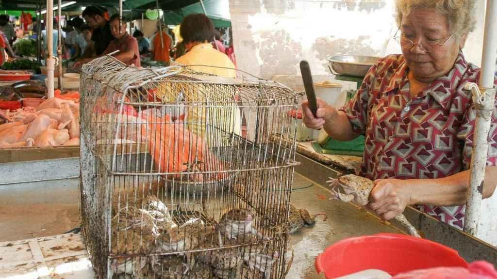 Una mujer china custodia una jaula con animales en un mercado.