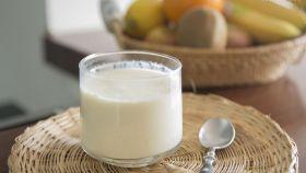 Un yogur griego elaborado de forma casera.