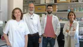 Laboratorio del CNB donde se está desarrollando la vacuna del equipo de Isabel Sola y Luis Enjuanes.