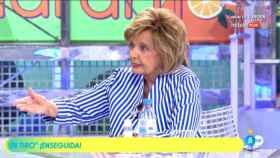 María Teresa Campos en 'Sálvame' (Telecinco)