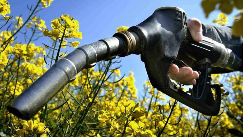 El Gobierno elevará el objetivo de biocarburantes al 9,5% en 2021 y al 10% en 2022