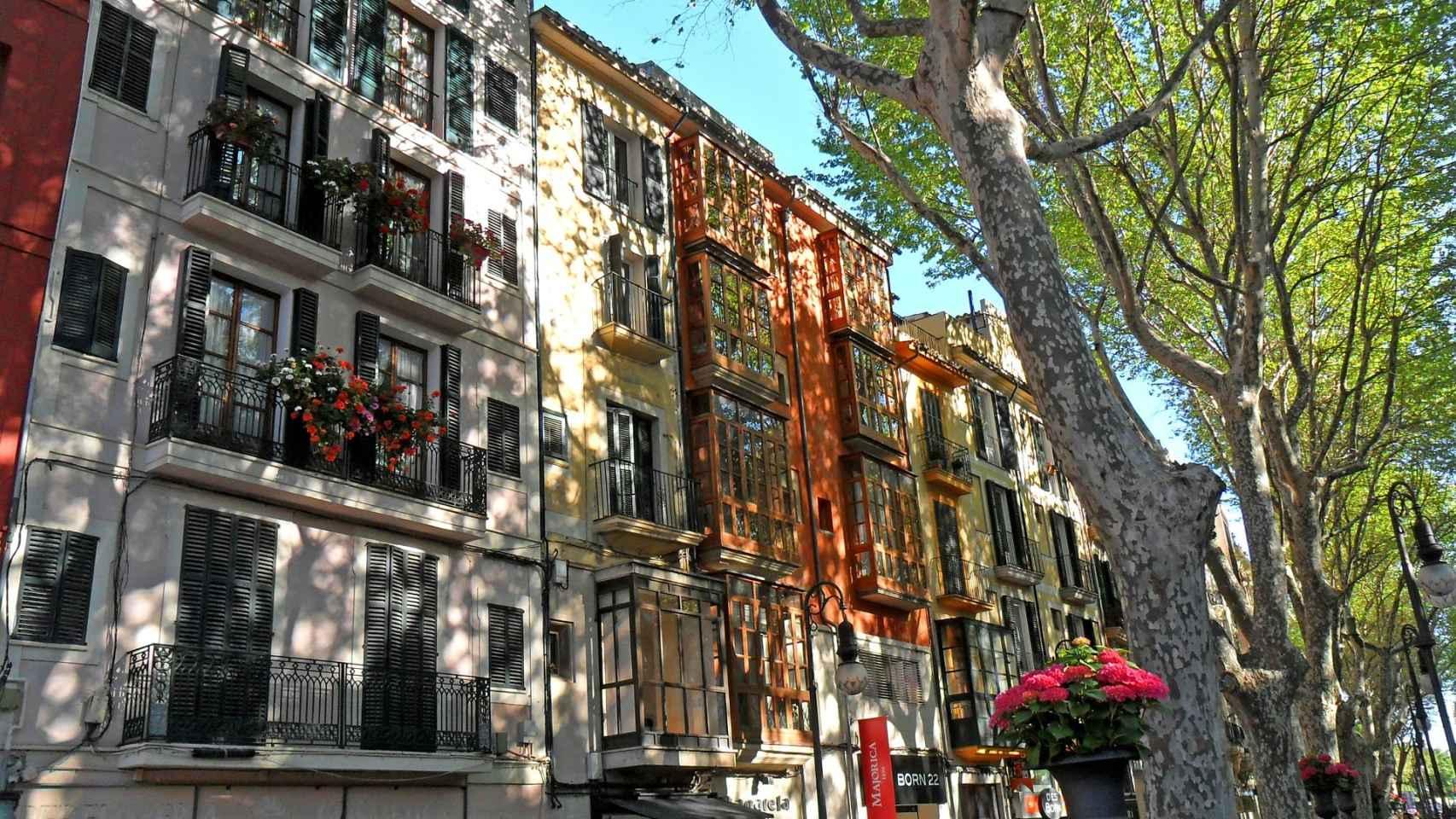 Imagen de una calle de Palma de Mallorca.