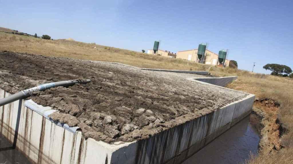 purines, restos orgánicos de explotaciones ganaderas