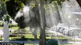 Un operario fumiga unos jardines en La Puebla del Río.
