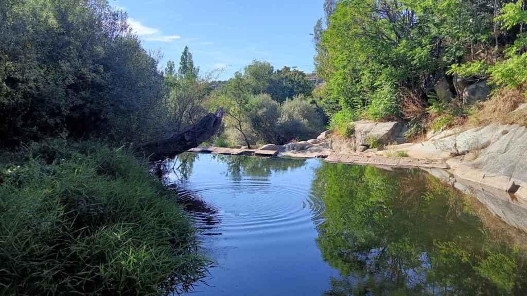 Rio Eresma, foto tomada con el Realme C11