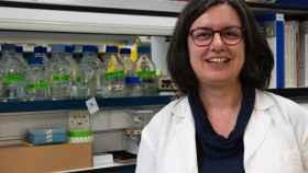 Sonia Zúñiga forma parte del laboratorio de Coronavirus del Centro Nacional de Biotecnología del CSIC