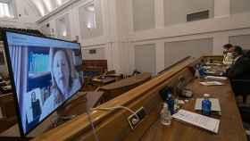 FOTO: Rosa Ana Rodríguez intervino por videoconferencia (JCCM).