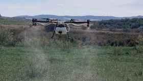 Un drone de Lokímica durante un desinsectación en una imagen de archivo.
