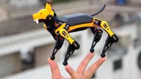 Petoi Bittle, el perro robótico.