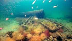 Los restos del barco de esclavistas descubierto en México.