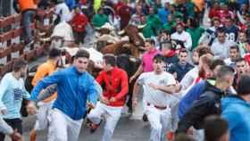 Uno de los encierros que se celebran durante las Fiestas de Guadalajara