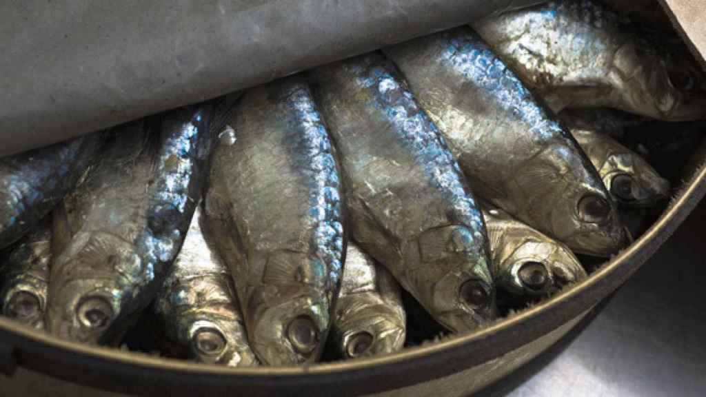 El pescado azul es la principal fuente alimentaria de omega-3.