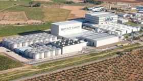 Impresionantes instalaciones de García-Carrión en Daimiel (Ciudad Real)