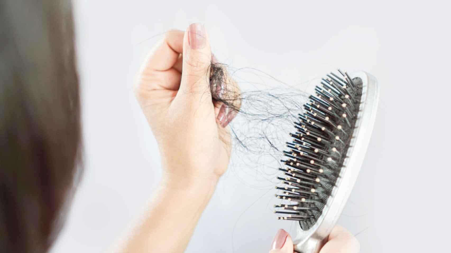 Prisionero de guerra bahía Firmar  Cómo frenar la caída del cabello con remedios caseros