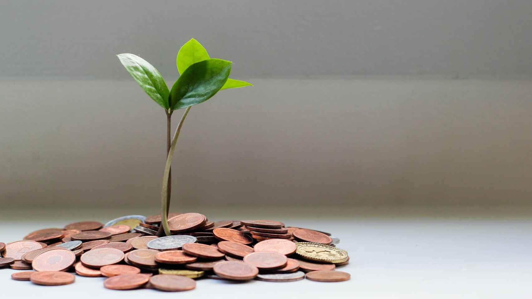 Los filántropos encuestados defienden que existe mucha burocracia y pocos incentivos en el sistema de donaciones.