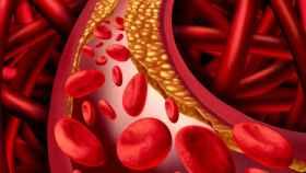 Reducen el colesterol