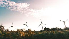 Parque de generación de energía eólica.